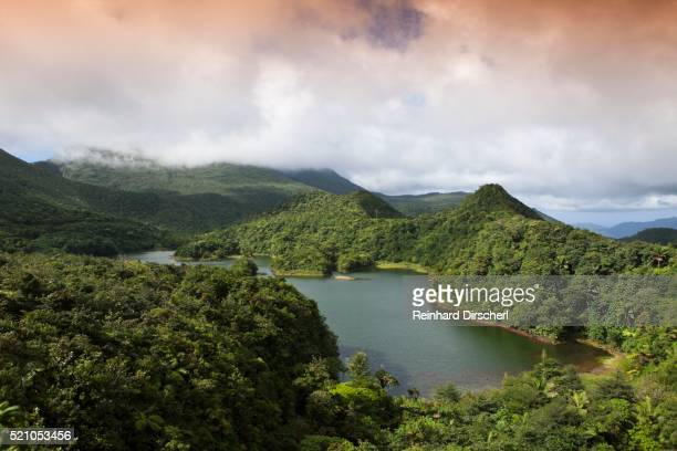 dominica, caribbean, freshwater lake in morne trois pitons national park listed as world heritage by unesco - dominica stock pictures, royalty-free photos & images
