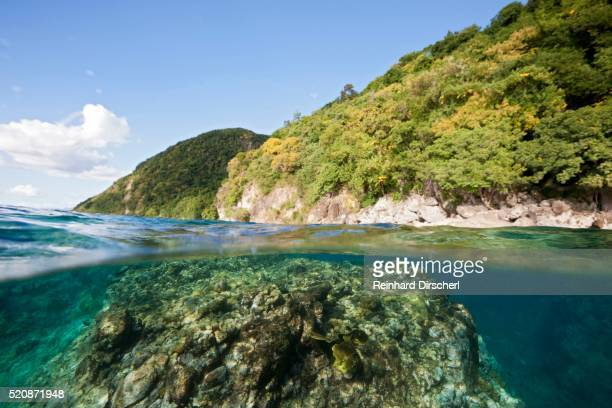 dominica, caribbean sea, coast of dominica - dominica stock pictures, royalty-free photos & images