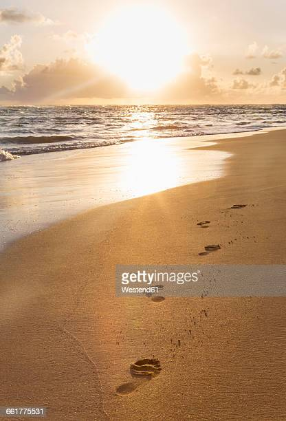 Dominican Rebublic, footprints in sand at tropical beach at sunset