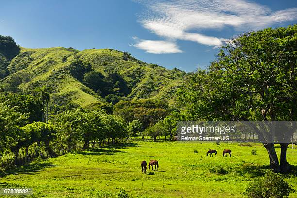 Dominican Republic Countryside