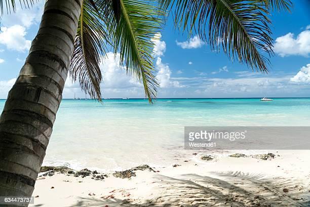 Dominican Republic, sandy beach of Bayahibe