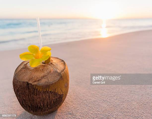 Dominican Republic, Tropical cocktail in coconut shell on sandy beach