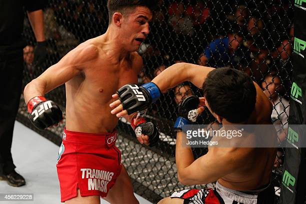 Dominick Cruz punches Takeya Mizugaki in their bantamweight fight during the UFC 178 event inside the MGM Grand Garden Arena on September 27, 2014 in...