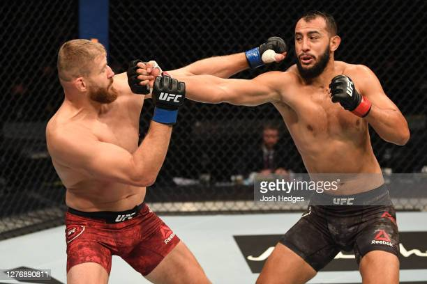 Dominick Reyes punches Jan Blachowicz of Poland in their light heavyweight championship bout during UFC 253 inside Flash Forum on UFC Fight Island on...