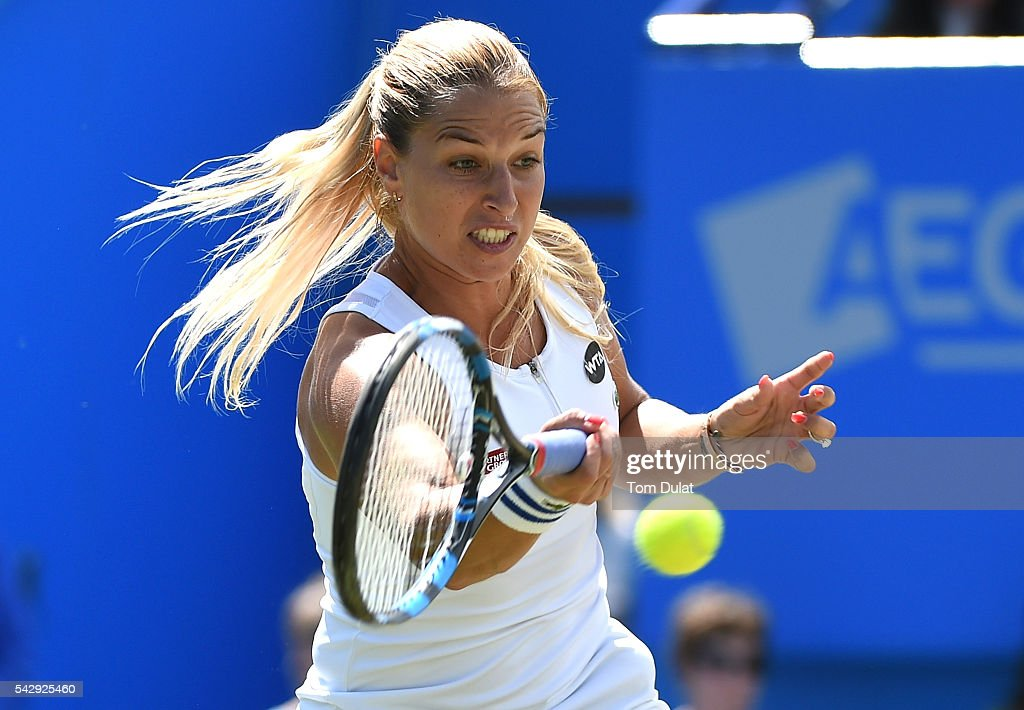 Aegon International - Day Seven : News Photo