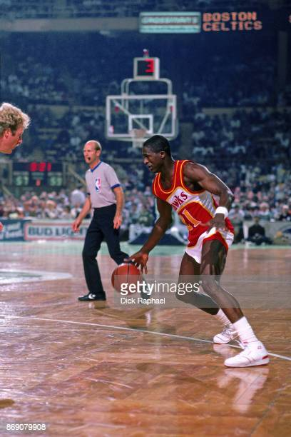 Dominique Wilkins of the Atlanta Hawks dribbles circa 1986 at the Boston Garden in Boston Massachusetts NOTE TO USER User expressly acknowledges and...