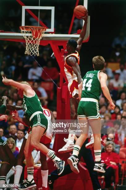Dominique Wilkins of the Atlanta Hawks dunks against the Boston Celtics circa 1986 at the Omni in Atlanta Georgia NOTE TO USER User expressly...
