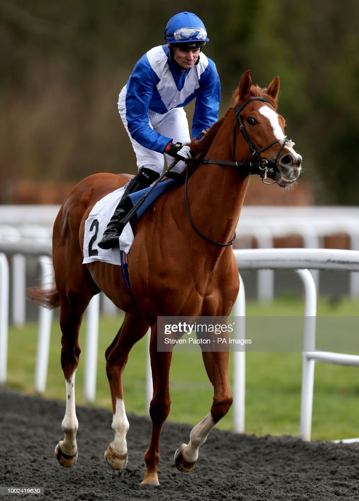 Easter family fun day kempton park racecourse pictures getty images dommersen ridden by robert havlin before the better odds with matchbook magnolia stakes during the easter negle Images