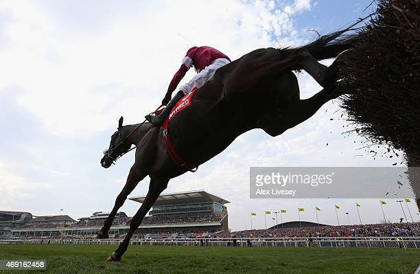 Don Cossack ridden by Tony McCoy jumps the last fence on their way to winning the Betfred Melling Steeple Chase at Aintree Racecourse on April 10...