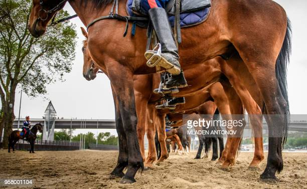 TOPSHOT Don Cossacks practise their riding skills on the left bank of Don river outside Rostov Arena in the southern Russian city of RostovonDon on...