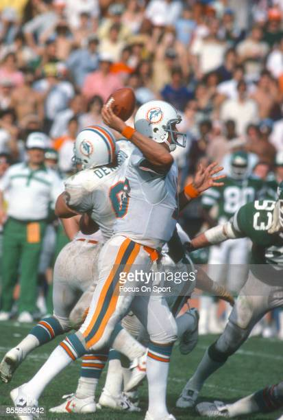 Don Strock of the Miami Dolphins throws a pass against New York Jets during an NFL football game December 15 1979 at the Orange Bowl in Miami Florida...