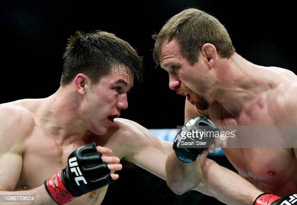 Donald 'Cowboy' Cerrone fights against Alex Hernandez during their lightweight fight at UFC Fight Night at Barclays Center on January 19 2019 in New...