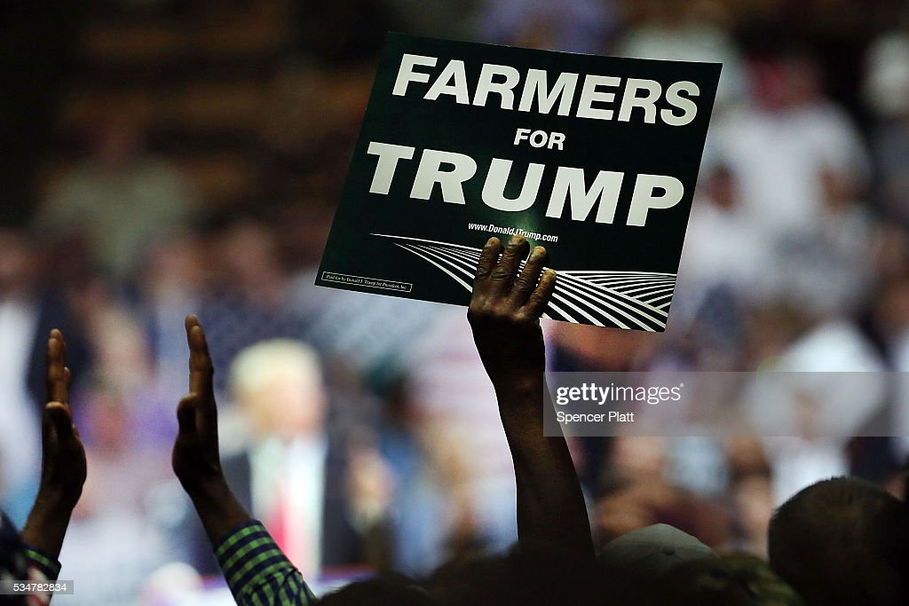 Donald Trump supporters listen to the presumptive Republican presidential candidate speak at a rally in Fresno on May 27, 2016 in Fresno, California. Trump is on a Western campaign trip which saw stops in North Dakota and Montana yesterday and two more in California today.