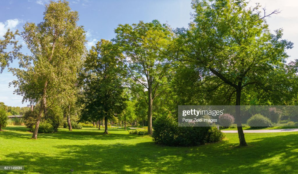 Donaupark in the district of Donaustadt, Vienna, Austria : Stock-Foto