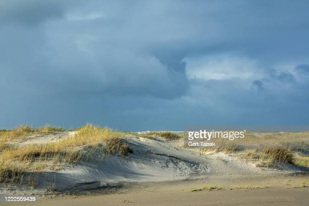 donkere lucht boven zonnige duinen - lucht stock pictures, royalty-free photos & images
