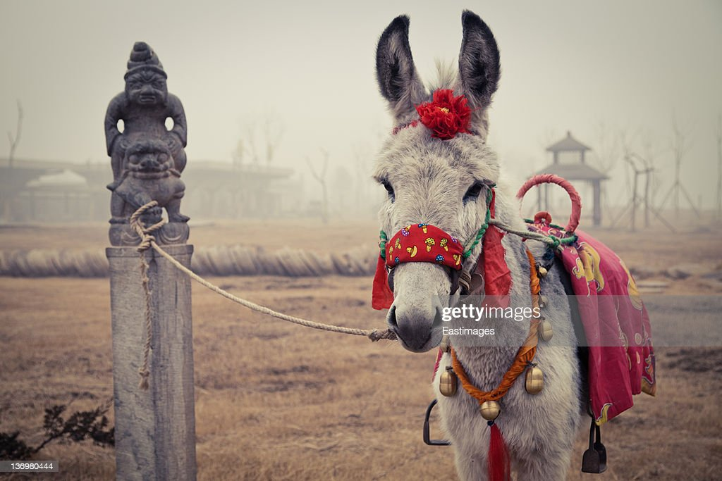 Donkey And Chinese Traditional Hitching Post Stock Photo