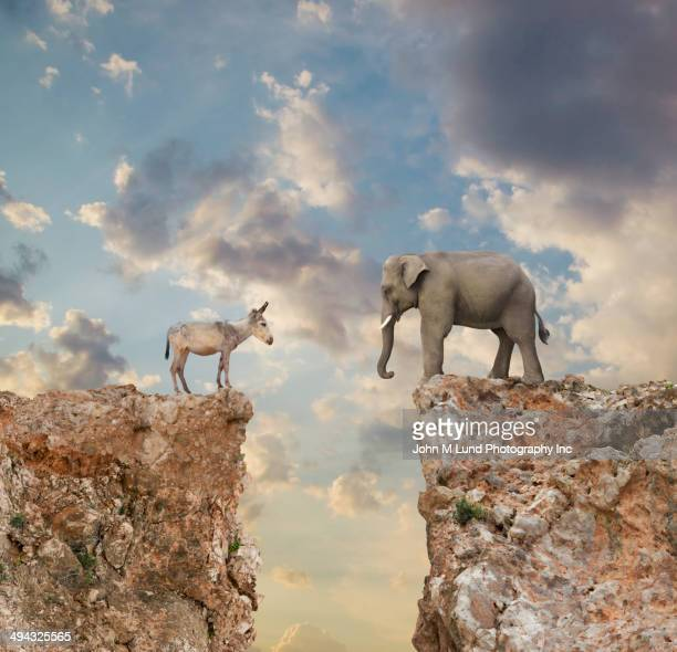 donkey and elephant separated by gap in cliff - republican party stock pictures, royalty-free photos & images