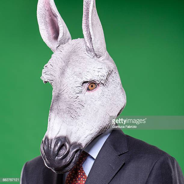 donkey businessman portrait - jackass images stock pictures, royalty-free photos & images