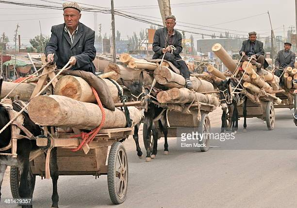 Donkey caravan brings materials to a construction site. Kashgar Xinjiang Autonomous Region, China
