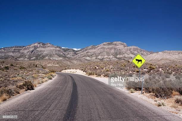 Donkey Crossing sign in desert