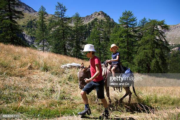 Donkey hiking, Children