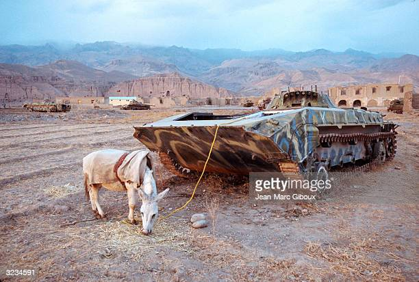 A donkey is tied to a tank November 23 2003 in Bamiyan Afghanistan The harsh environment of the Bamiyan province remains one of the poorest area of...