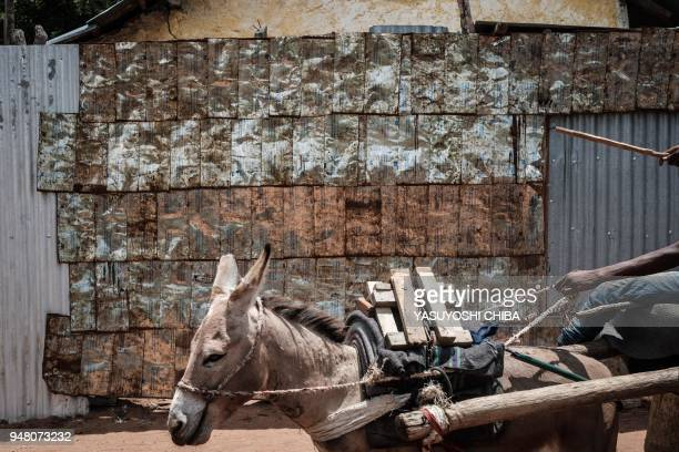 Donkey pulls a cart as he passes in front of a metal fence made by vegetable oil cans from the United States Agency for International Development at...