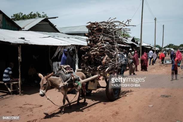 Donkey pulls a cart loaded with firewood at the Dadaab refugee complex, northeastern Kenya, on April 18, 2018. - Dadaab is one of the biggest refugee...