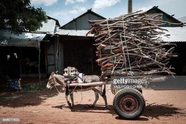 Donkey pulls a cart loaded with firewood at the Dadaab refugee complex, northeastern Kenya, on April 18, 2018. The Dadaab refugee complex shelters...