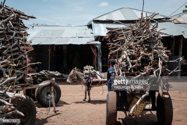 Donkey pulls a cart loaded with firewood next to a child at the Dadaab refugee complex, northeastern Kenya, on April 18, 2018. The Dadaab refugee...
