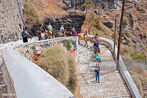 donkey ride in santorini - donkey stock pictures, royalty-free photos & images