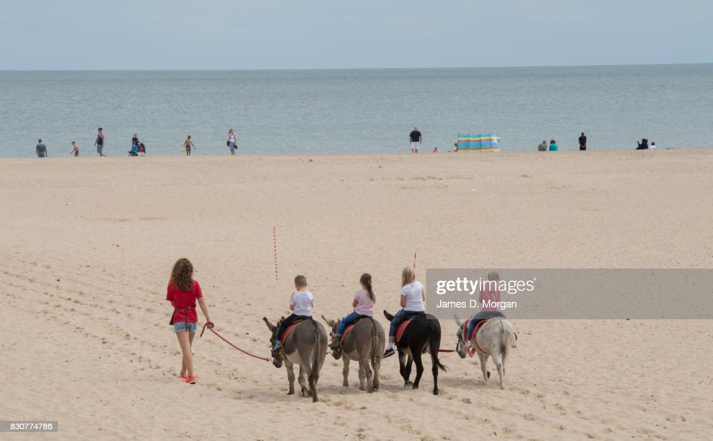 Donkeys take visitors for rides on August 12, 2017 in Great Yarmouth, England. A cloudy overcast day greeted visitors to the Norfolk seaside town on one of the busiest weekends of the summer period. The town has been a seasiside resort since 1760 and today it has developed renewable energy sources with a wind farm of 30 generators within sight of the town in the North Sea. Thousands of British holidaymakers will visit the area over the summer period.
