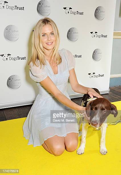 Donna Air attends the Dogs Trust Honours held at Home House on July 23, 2013 in London, England.