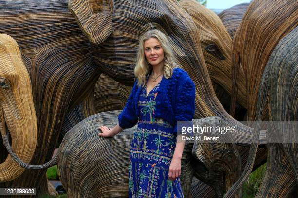 Donna Air celebrates The Elephant Family's CoExistence campaign at a special exhibition featuring elephant sculptures crossing The Mall on May 15,...