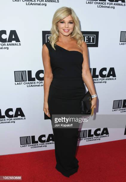 Donna D'Errico attends Last Chance For Animals' Hosts Annual Celebrity Benefit at The Beverly Hilton Hotel on October 20 2018 in Beverly Hills...
