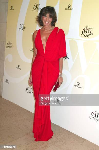 Donna Karan during 2005 CFDA Fashion Awards Inside the Dinner Green Room Departures at New York Public Library in New York City New York United States