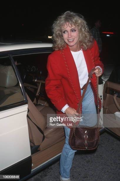 Donna Mills during Human From Hollywood Benefit Gala at Leeza Gibbons J Stephen Meadows' Los Angeles Home in Los Angeles California United States