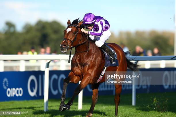Donnacha O'Brien rides Magical to win the The QIPCO Champion Stakes during the QIPCO British Champions Day at Ascot Racecourse on October 19, 2019 in...