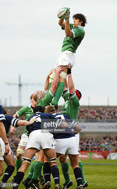 Donnacha O'Callaghan of Ireland wins the lineout ball during the RBS Six Nations match between Ireland and Scotland held on March 27 2004 at...