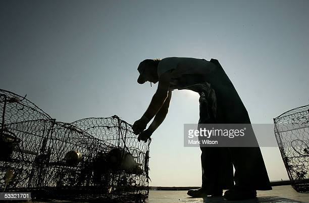 Donnie Eastridge places a crab pot on top of Foxy Roxy crab boat while commercial crabbing on the Chesapeake Bay August 3 2005 in Chesapeake Beach...
