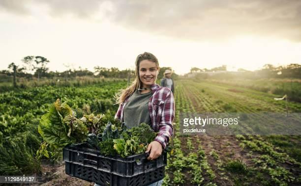 vergessen sie nicht, ihre lokalen bio-landwirt unterstützen - feld stock-fotos und bilder