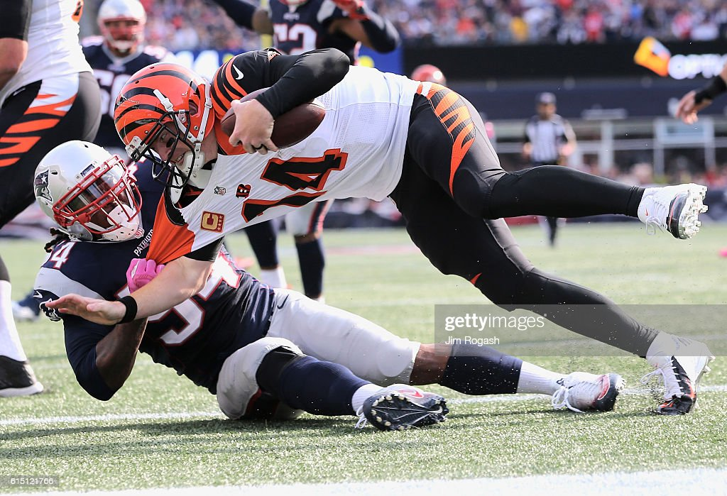 Dont'a Hightower #54 of the New England Patriots sacks Andy Dalton #14 of the Cincinnati Bengals during the third quater of the game at Gillette Stadium on October 16, 2016 in Foxboro, Massachusetts.
