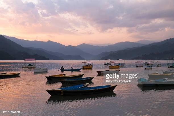 doongas moored on phewa lake, pokhara - pokhara stock pictures, royalty-free photos & images