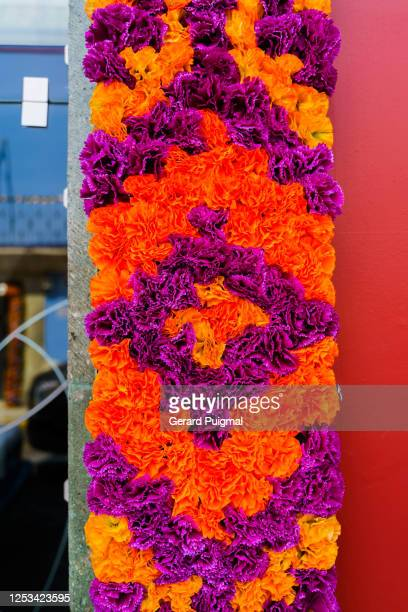"""door arch decorated with flowers  to celebrate day of the dead in oaxaca (oaxaca state, mexico) - """"gerard puigmal"""" stock pictures, royalty-free photos & images"""