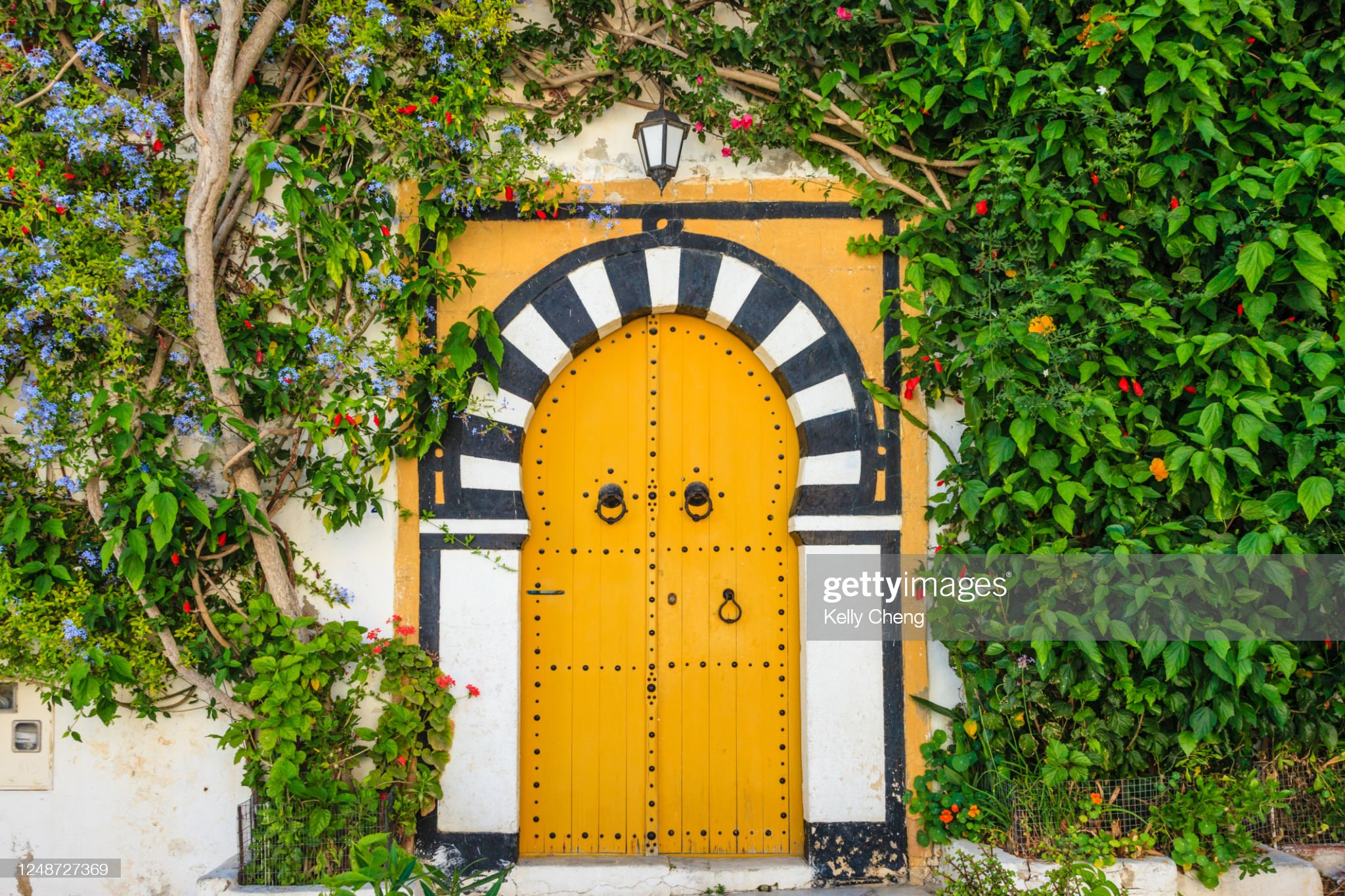 Door in the town Sidi Bou Said : Foto stock