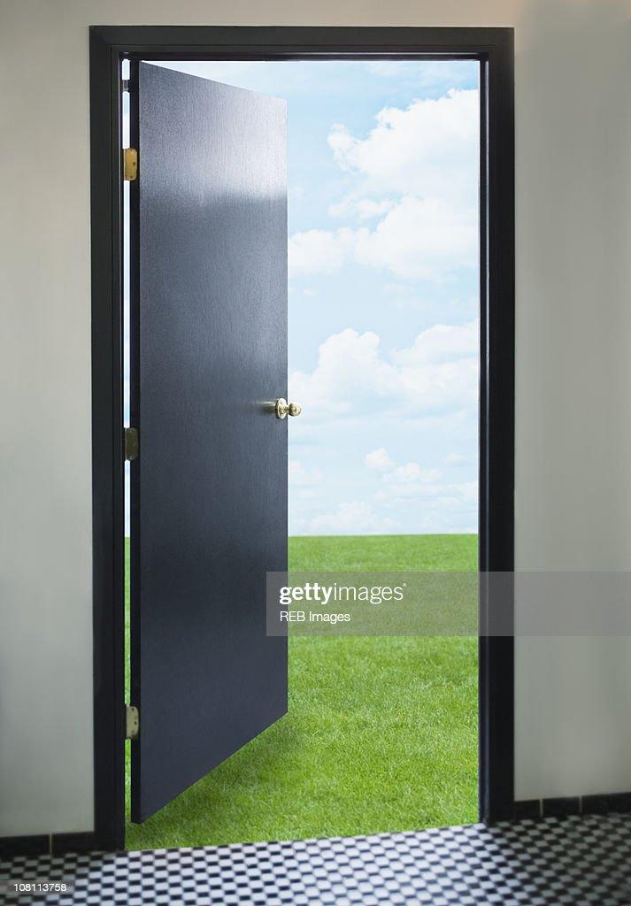 Door opening onto green lawn : Bildbanksbilder