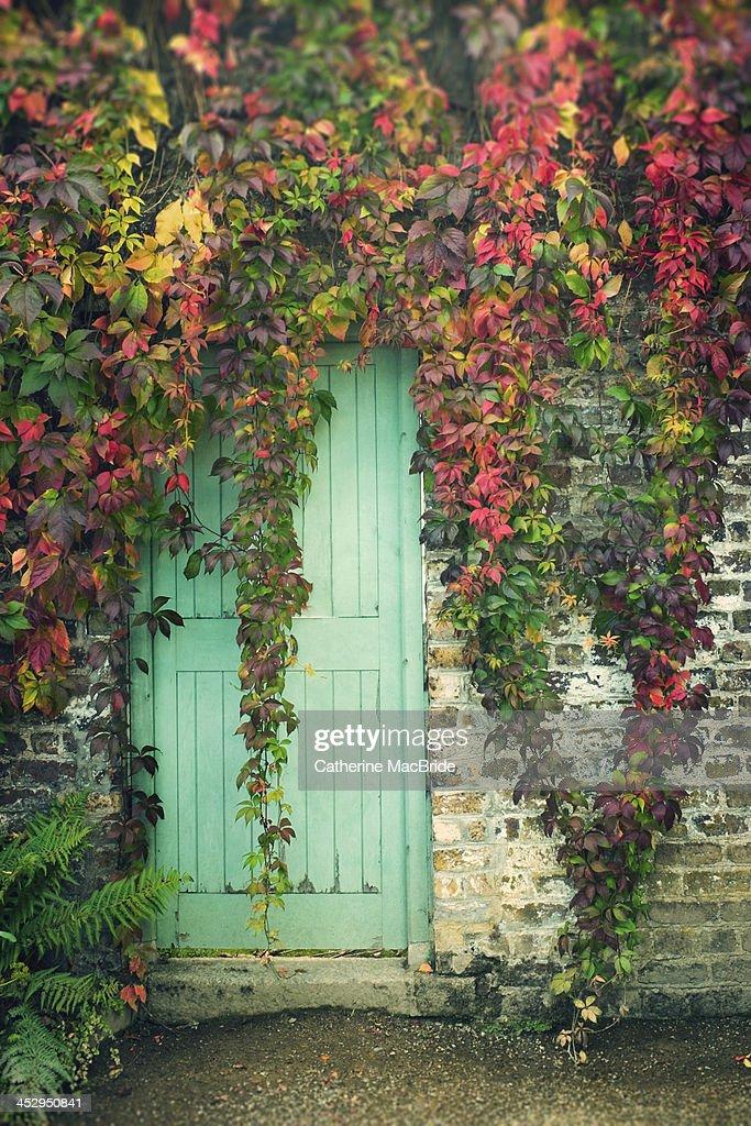 Door to the secret garden... : Stock Photo