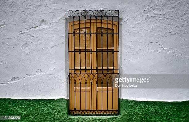 Door with iron grill