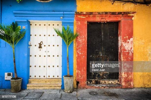 doors and palm trees, cartagena de indias, columbia - cartagena colombia foto e immagini stock