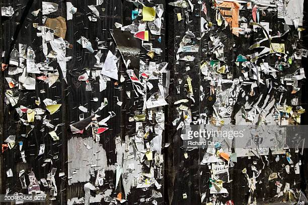 doors covered in staples and ripped flyers - richard drury stock pictures, royalty-free photos & images